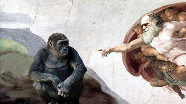 Darwins Slipslop